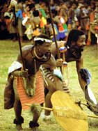Swaziland reed dance men
